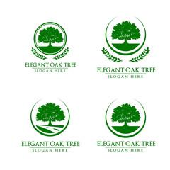Green Oak Tree Vector Logo Design