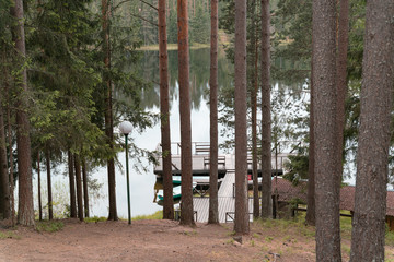 view of the pier through the trees