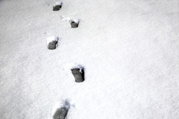 human footprints on white snow background image