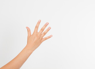 Woman's hand up. handbreadth isolated on a white background. Front view. Mock up. Copy space. Template. Blank.