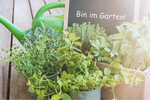Schild Bin Im Garten Mit Kräutertöpfen Stockfotos Und Lizenzfreie