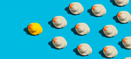 Rubber ducks leadership concept on a blue background