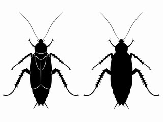 silhouette of cockroach , vector draw