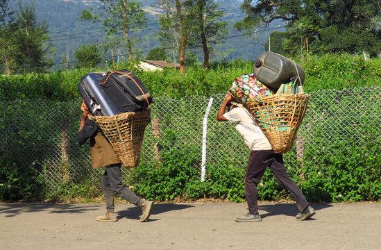 Porters carrying heavy luggage to Tumlingtar airport , Khandbari, Nepal