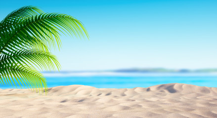 Leerer Strand mit Palme