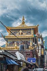 Indien- Dharamsala