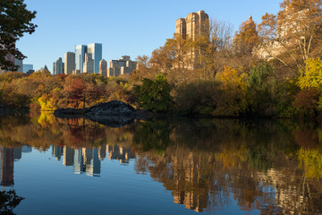 Skyline of Manhattan reflected in a pond in central park at sunrise, New York, United States of America