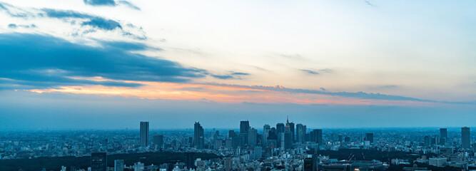 Deurstickers Stad gebouw 東京の景観