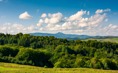 beautiful summer landscape. mountain ridge with high peak behind the forest. lovely sky with clouds