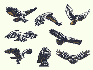 Set of vector eagles.  Wall mural