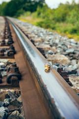 snail on a railway track