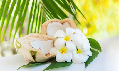 Fresh coconut cuts with tropical palm leaves and white frangipani flowers