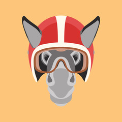 donkey in  helmet  face head vector illustration flat style