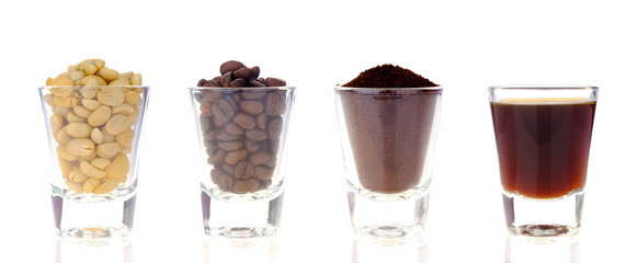Coffee process collection on white background.