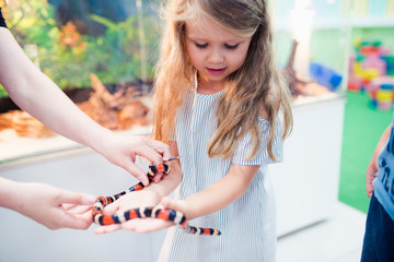 children touch the snake at the zoo