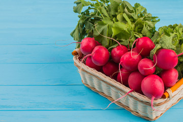 Red radishes in basket. Blue wooden table.