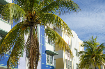 Typical colorful Art Deco architecture with palm tree in South Beach, Miami, Florida