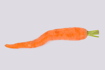 Ugly crooked carrot. White isolated background.