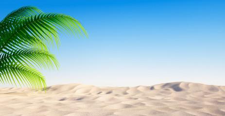 Leerer Sandstrand mit Palme und blauem Himmel
