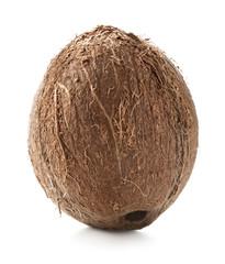whole ripe hairy coconut fruit isolated on white background