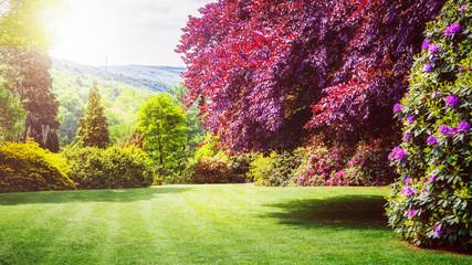Spring green park.