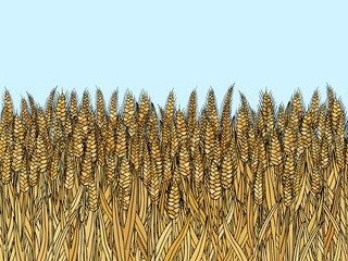 cartoon doodle wheat seamless pattern