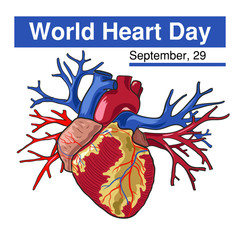 World Heart Day. 29 September. Vector illustration on white background. Excellent holiday gift card.