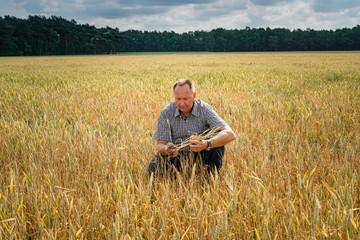Trockenheit - Dürre, Landwirt hockt ratlos in seinem  vertrockneten Getreidefeld