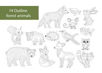 Big set of hand drawn forest illustraitions with outline animals on a white background. Woodland icons.