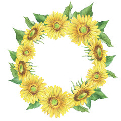 Banner, round frame with yellow flower of agriculture plant sunflower (also known as Helianthus annuus). Watercolor hand drawn painting illustration isolated on a white background