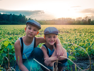 Little boys on farm at sunset