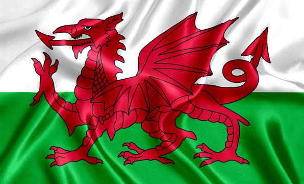 Welsh flag silk