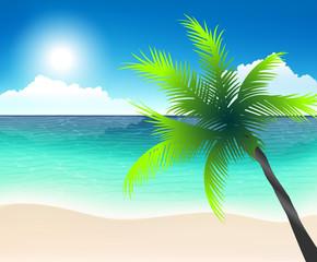 пляжная линия, белый песок, бирюзовое море, пальма