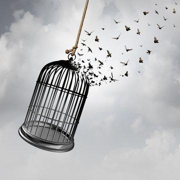 Freedom Idea