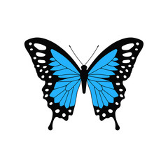 Blue butterfly. Vector. Isolated.