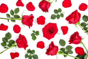 beautiful red rose with leaves and petals isolated on white background. Top view. Flat lay pattern