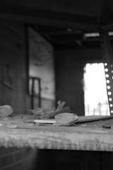 Abandoned shed