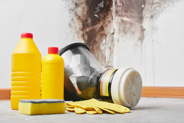 Mold. Aspergillus. Detergents, household gloves, a sponge, a bucket on a white wall background with a black fungus..