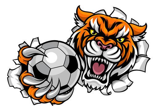 Tiger Holding Soccer Ball Breaking Background