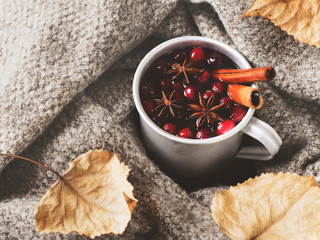Mulled wine in cup with cranberry and spices