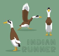 Duck Indian Runner Cartoon Vector Illustration