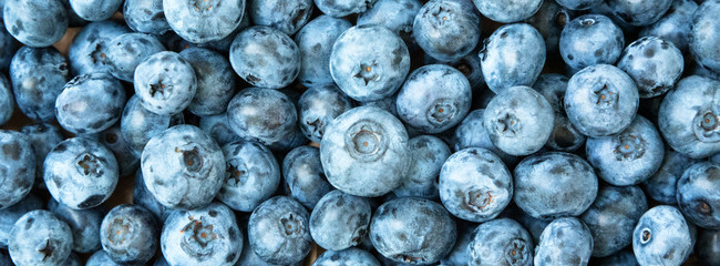 Fresh blueberry background. Blueberries texture close up