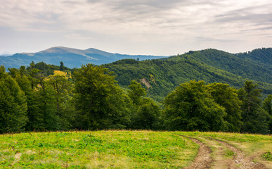 country road down the hill in to the forest. beautiful scenery of Carpathian nature. high mountain ridge in the distance