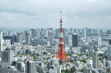 Tokyo city view in Tokyo