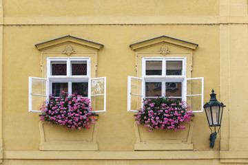 Prague. Window in the old house, decorated with flowering plants..