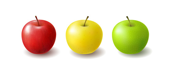 Group of Isolated realistic colored apples. Set of whole juicy fruits with shadow on white background. Red, yellow and green apples.