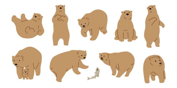 Bear vector polar Bear icon logo cartoon fish salmon illustration character doodle brown