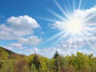 Sonnenstrahlen am Wolkenhimmel über einem Mischwald