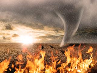 Naturkatastrophen und Ihre Folgen