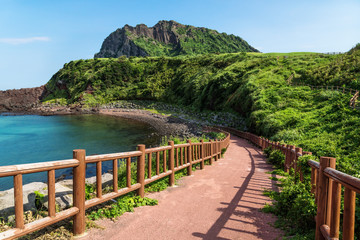Pathway leading to beach with view over ocean and Ilchulbong, Seongsan, Jeju Island, South Korea